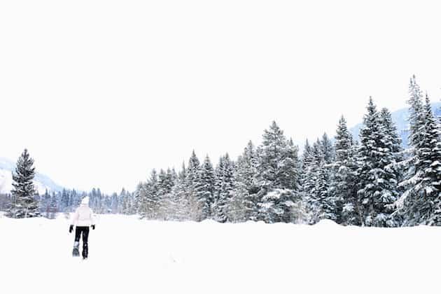 5 Reasons to Love Snowshoeing 7