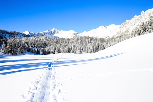 5 Reasons to Love Snowshoeing 8
